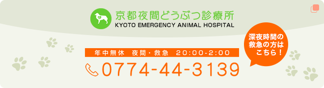 KYOTO EMERGENCY ANIMAL HOSPITAL